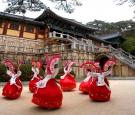 Du Lịch Hàn Quốc  MÙA HOA ANH ĐÀO 2017